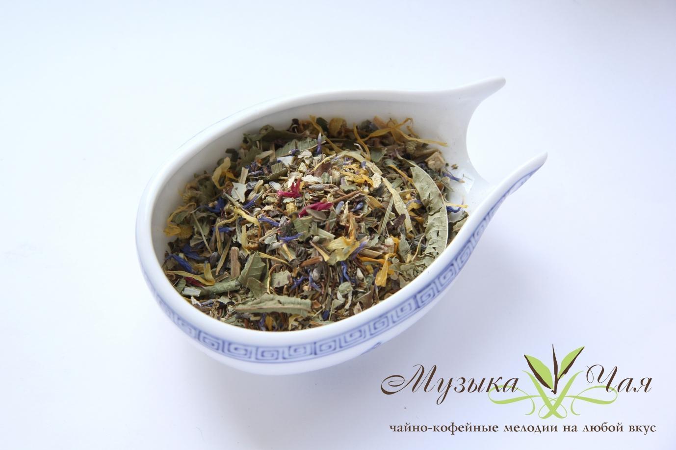 эхинацея пурпурная чай